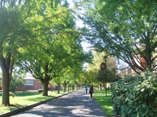 Susquehanna_University_path