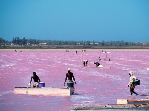 the-pink-lake